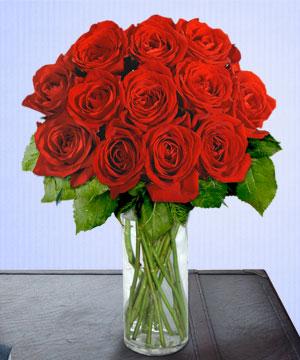 Anneme 12 adet cam içerisinde kirmizi gül  Kayseri çiçek çiçek siparişi vermek