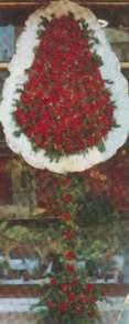 Kayseri çiçek çiçek satışı  dügün açilis çiçekleri  Kayseri hacılar çiçek çiçek gönderme sitemiz güvenlidir