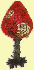 Kayseri çiçek ucuz çiçek gönder  dügün açilis çiçekleri  Kayseri çiçek güvenli kaliteli hızlı çiçek