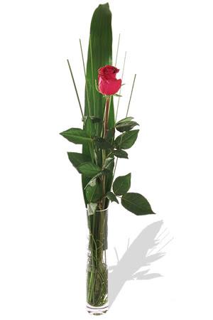 1 adet cam vazo içerisinde kirmizi gül  Kayseri çiçek çiçek siparişi sitesi