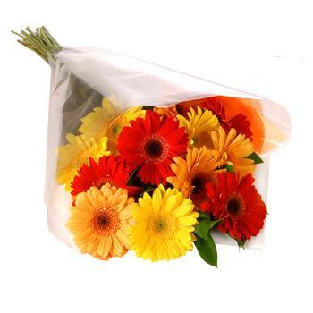 Karisik renklerde gerbera buketi  Kayseri çiçek hediye sevgilime hediye çiçek