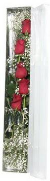 Kayseri çiçek çiçek siparişi vermek   5 adet gülden kutu güller