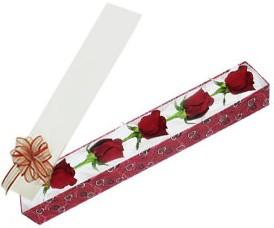 Kayseri çiçek online çiçek gönderme sipariş  kutu içerisinde 5 adet kirmizi gül