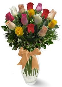 15 adet vazoda renkli gül  Kayseri çiçek online çiçek gönderme sipariş
