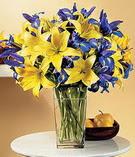 Kayseri çiçek çiçek mağazası , çiçekçi adresleri  Lilyum ve mevsim  çiçegi özel