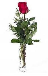 Vazo içerisinde 1 adet kirmizi gül  Kayseri çiçek hediye sevgilime hediye çiçek