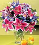 Kayseri çiçek online çiçekçi , çiçek siparişi  Sevgi bahçesi Özel  bir tercih
