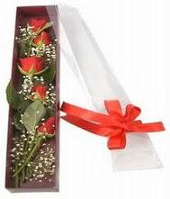 kutu içinde 5 adet kirmizi gül  Kayseri çiçek cicekciler , cicek siparisi