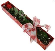 Tek kirmizi gül kutu içerisinde  Kayseri kocasinan çiçek İnternetten çiçek siparişi