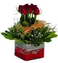 Kayseri çiçek ucuz çiçek gönder  7 adet mika yada cam vazoda gül tanzimi