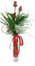 Kayseri çiçek çiçek siparişi vermek  3 adet kirmizi gül vazo içerisinde