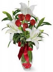 Kayseri çiçek uluslararası çiçek gönderme  5 adet kirmizi gül ve 3 kandil kazablanka