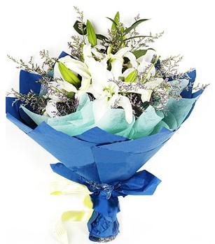 Kayseri çiçek çiçek mağazası , çiçekçi adresleri  4 adet dal kazablankadan görsel buket