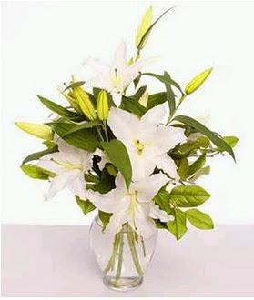 Kayseri çiçek ucuz çiçek gönder  2 dal cazablanca vazo çiçeği
