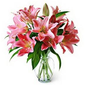 3 dal kazablanka görsel vazosu  Kayseri çiçek cicekciler , cicek siparisi