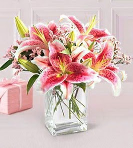 2 dal kazablanka görsel vazosu  Kayseri çiçek çiçek siparişi vermek