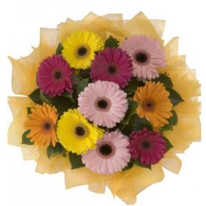 Kayseri akkışla çiçek çiçekçi telefonları  11 adet karışık gerbera çiçeği buketi