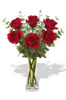 Kayseri çiçek internetten çiçek siparişi  6 kırmızı gül vazosu