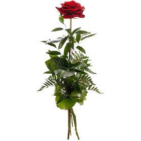 Kayseri melikgazi çiçek çiçek yolla  1 adet kırmızı gülden buket