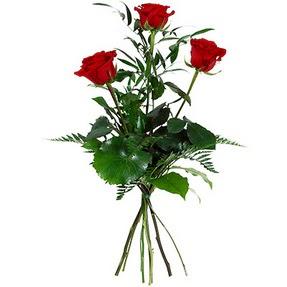 Kayseri çiçek çiçek online çiçek siparişi  3 adet kırmızı gülden buket