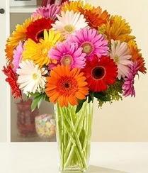 Kayseri çiçek yurtiçi ve yurtdışı çiçek siparişi  15 adet gerbera çiçek vazosu