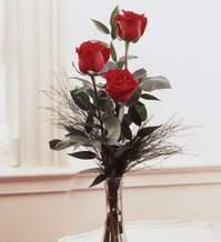 Kayseri çiçek online çiçek gönderme sipariş  Vazoda 3 adet güzel gül