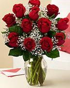 Sevgilime hediye 9 adet 1.ci kalite gül  Kayseri çiçek çiçek mağazası , çiçekçi adresleri