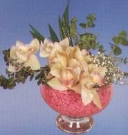 Kayseri çiçek online çiçekçi , çiçek siparişi  Dal orkide kalite bir hediye