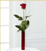 Vazo içerisinde 1 adet kırmızı gül  Kayseri çiçek cicekciler , cicek siparisi