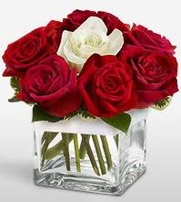 Tek aşkımsın çiçeği 8 kırmızı 1 beyaz gül  Kayseri çiçek çiçek online çiçek siparişi