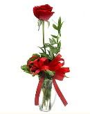 vazo içerisinde 1 adet kırmızı gül  Kayseri çiçek hediye çiçek yolla