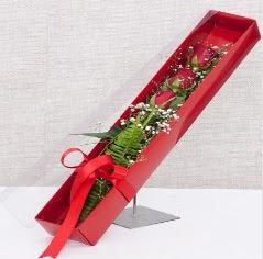 Kutu içerisinde 3 adet kırmızı gül  Kayseri çiçek 14 şubat sevgililer günü çiçek