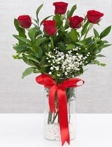 cam vazo içerisinde 5 adet kırmızı gül  Kayseri çiçek hediye sevgilime hediye çiçek