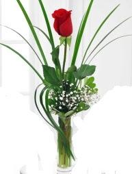 Cam içerisinde 1 kırmızı gül  Kayseri çiçek çiçek satışı