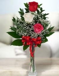 Camda 2 kırmızı 1 beyaz gül  Kayseri çiçek internetten çiçek satışı
