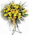 Kayseri hacılar çiçek çiçek gönderme sitemiz güvenlidir  Sari kazablanka Ferforje