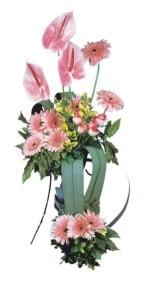 Kayseri kocasinan çiçek İnternetten çiçek siparişi  Pembe Antoryum Harikalar Rüyasi
