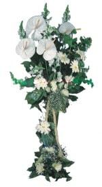 Kayseri çiçek online çiçekçi , çiçek siparişi  antoryumlarin büyüsü özel