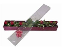 Kayseri çiçek çiçek mağazası , çiçekçi adresleri   6 adet kirmizi gül kutu içinde