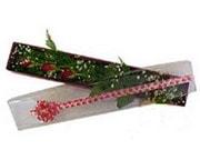 Kayseri çiçek çiçekçiler  3 adet gül.kutu yaldizlidir.