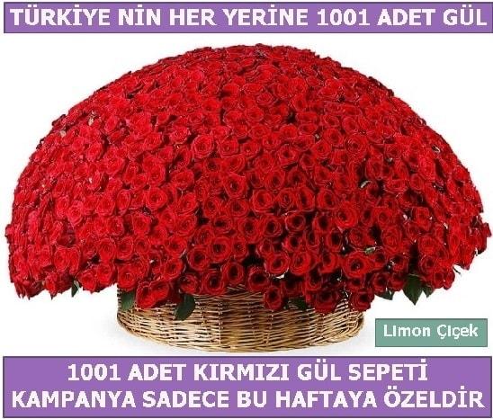 1001 Adet kırmızı gül Bu haftaya özel  Kayseri akkışla çiçek çiçekçi telefonları