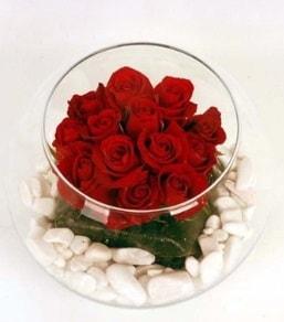 Cam fanusta 11 adet kırmızı gül  Kayseri çiçek ucuz çiçek gönder