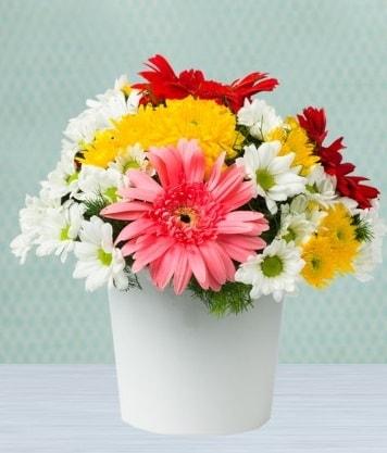 Seramik Vazoda Gelbera ve Papatya  Kayseri çiçek ucuz çiçek gönder
