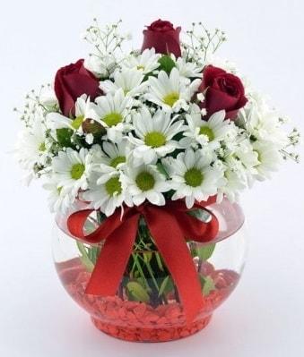 Fanusta 3 Gül ve Papatya  Kayseri çiçek online çiçek gönderme sipariş