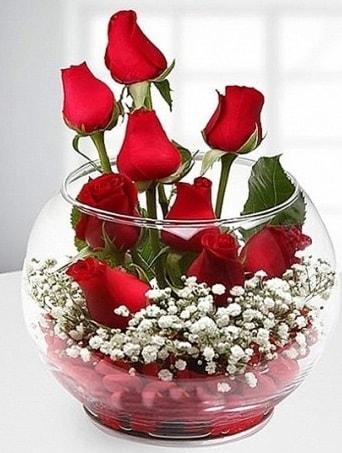 Kırmızı Mutluluk fanusta 9 kırmızı gül  Kayseri çiçek çiçek siparişi vermek
