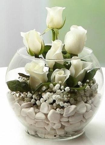 Beyaz Mutluluk 9 beyaz gül fanusta  Kayseri çiçek çiçek siparişi vermek