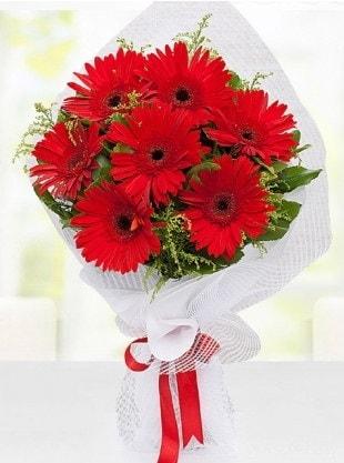 Kırmızı Gelbera Buketi  Kayseri çiçek cicekciler , cicek siparisi