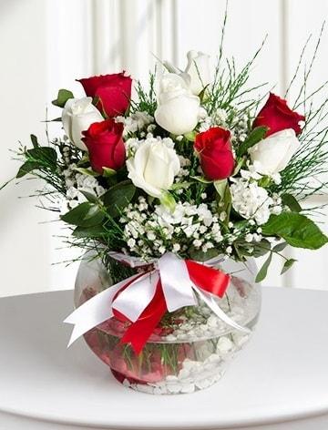 Aşk Küresi  5 beyaz 5 kırmızı gül fanusta  Kayseri çiçek online çiçek gönderme sipariş