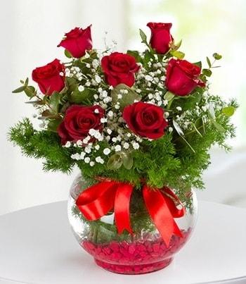 fanus Vazoda 7 Gül  Kayseri çiçek çiçek siparişi sitesi