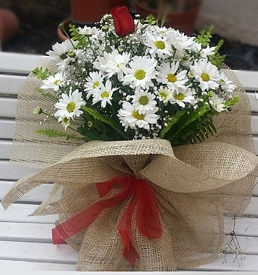 Papatya 1 adet kırmızı gül buketi  Kayseri çiçek cicek , cicekci